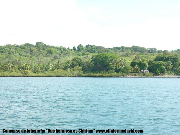 Isla La Ensenada en Tole